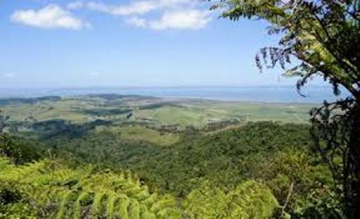 Kaipara Coast