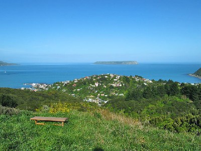 Plimmerton Andy Cooling Real Estate
