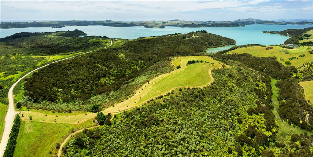 Build your own luxury nest amongst the kiwis