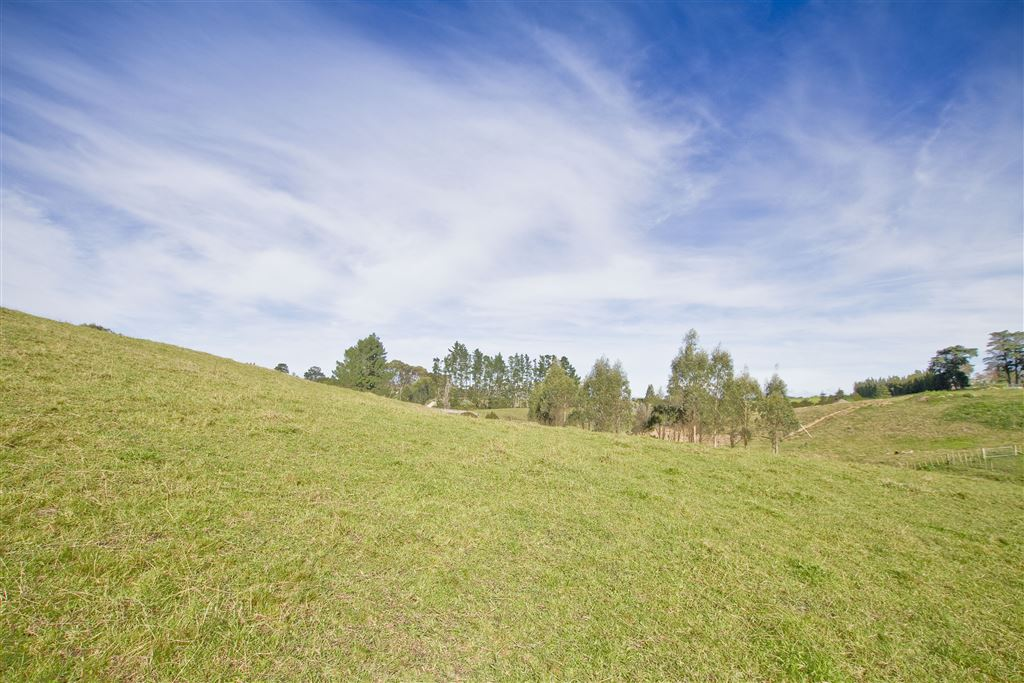 1.12Ha (2¾ acres) Lifestyle Block, Ideal Location