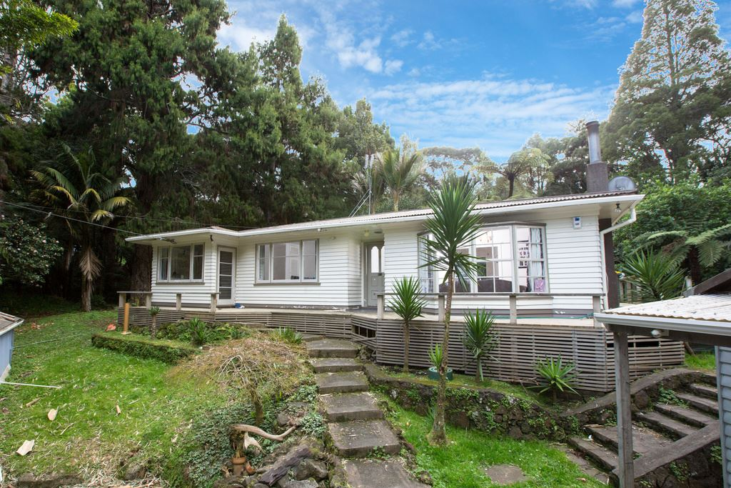 Bargain Buying in Titirangi