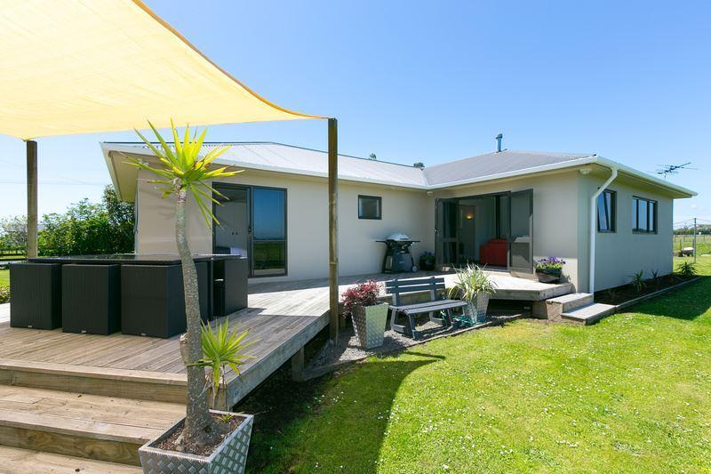 The Kiwi Dream