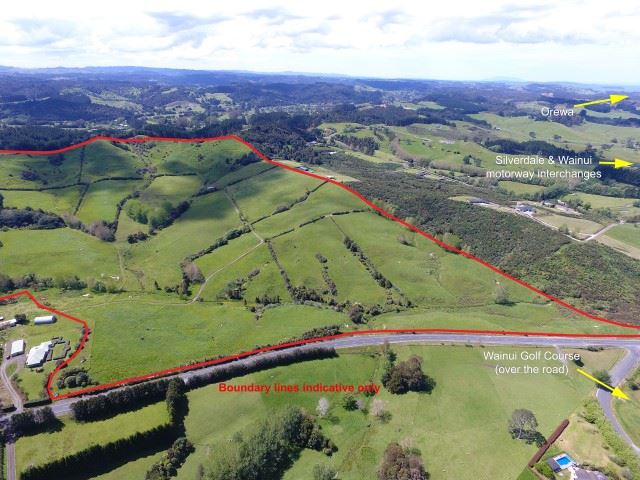 115 acres +/- in Wainui only a few minutes from the motorway on/off ramps