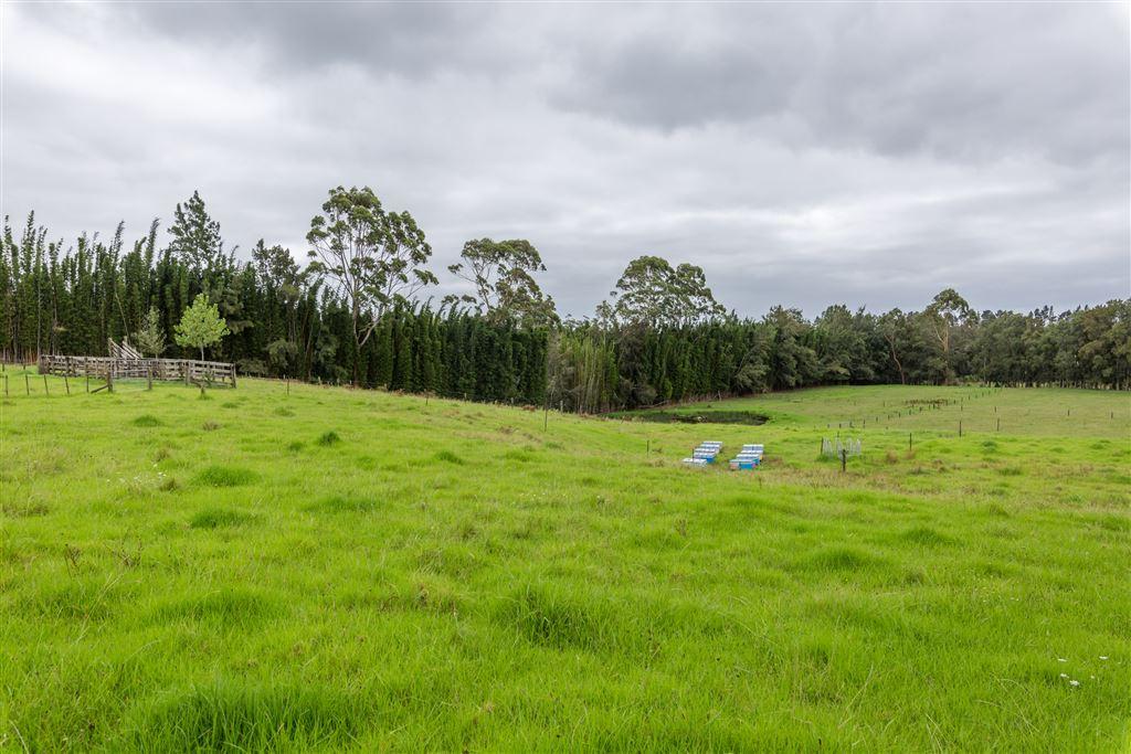 3.2 ha of North facing pasture land.