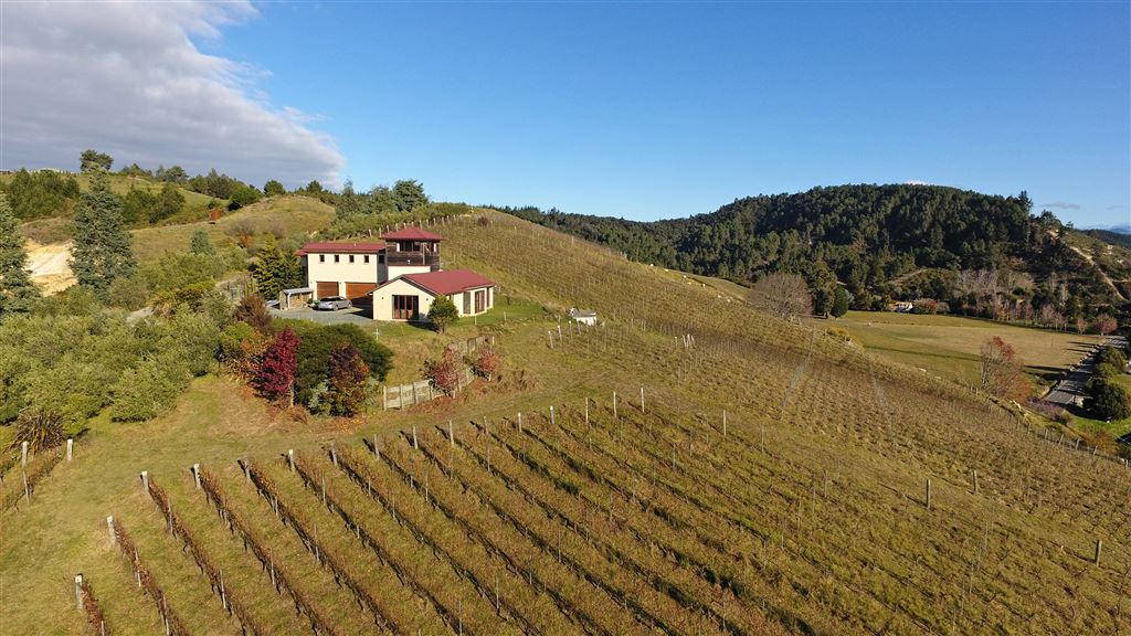 Tuscan Villa in the Vineyard