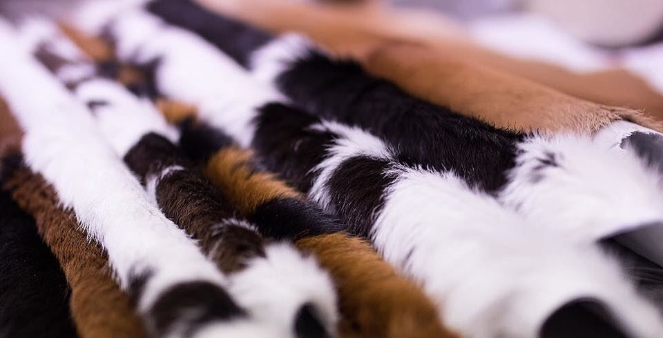 Import and Wholesale (Leather Hides)