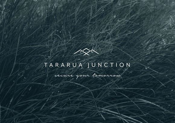 Tararua Junction - Secure Your Tomorrow