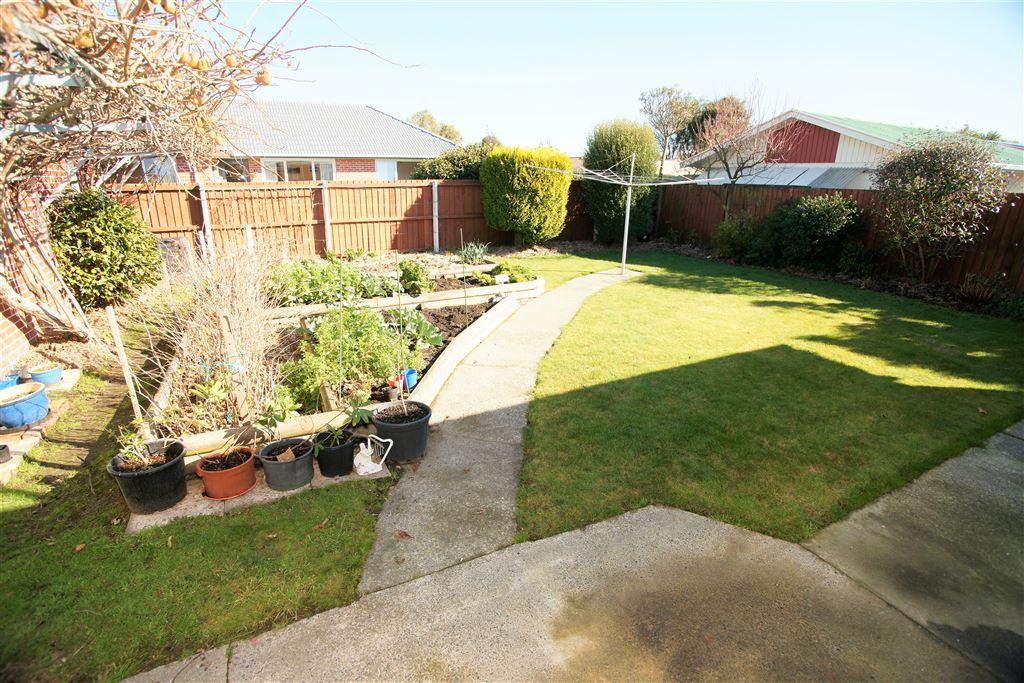 Back yard, with planter boxes & a fantastic Kiwi fruit tree