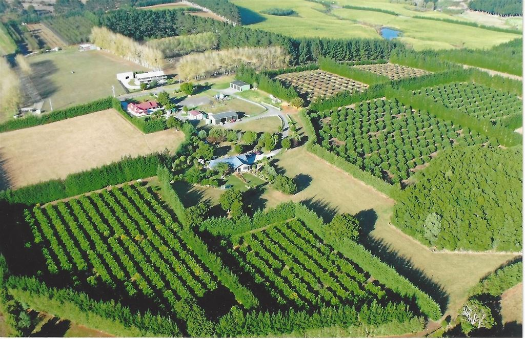 A Grand Lifestyle - Live and Grow! 21.6900ha Horticulture block | Avocado | Lemon | 4 Bedrooms 2 bath | Swimming Pool| Call Mumtaj@Harcourts