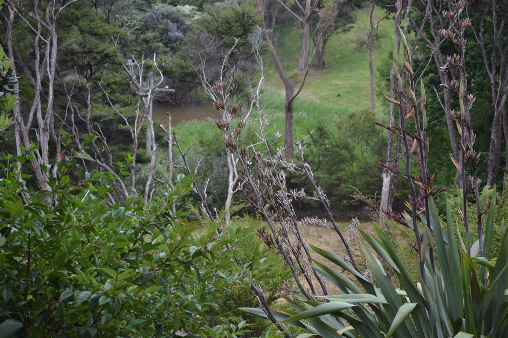 Outlook from lower boundary over neighbouring land