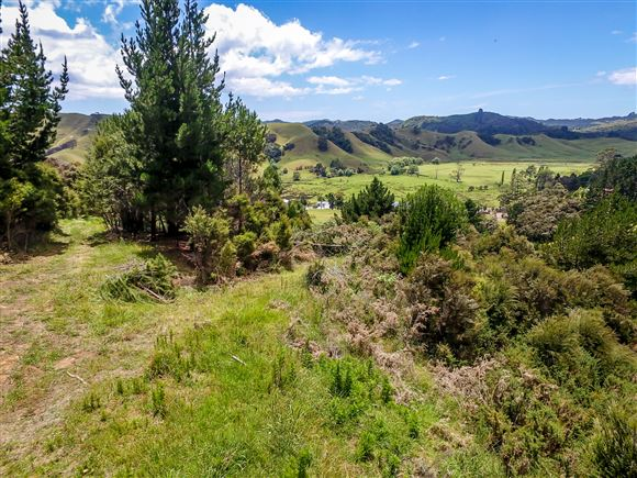Country Lifestyle Living in Whangaroa