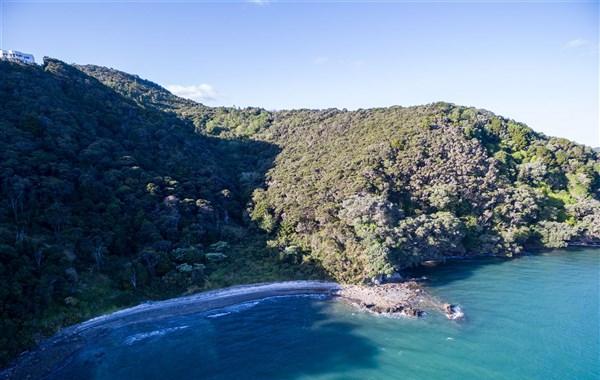 Parua Bay