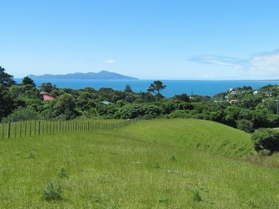 Pukerua Bay Andy Cooling Real Estate