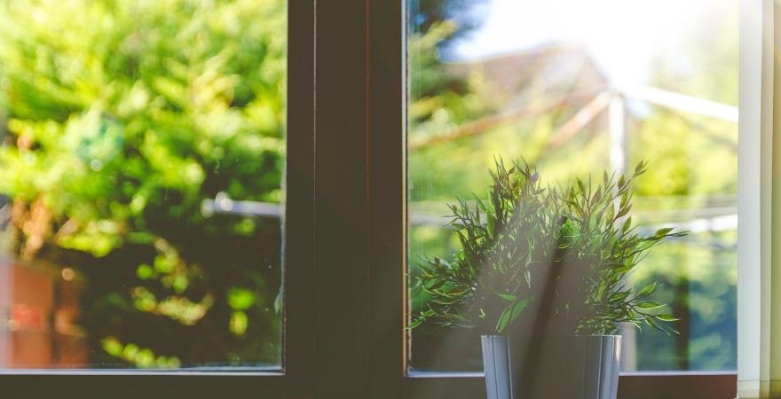 Sunlight streaming through window