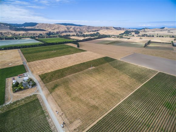 Producing Vineyard with Development Potential