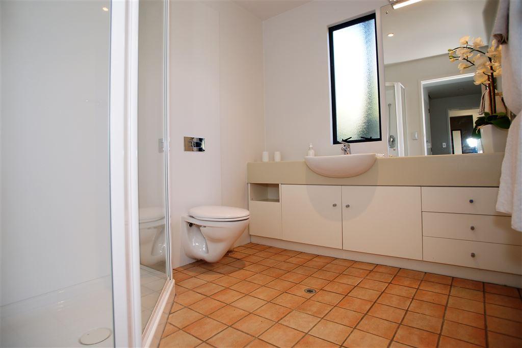 Main bathroom, lower level