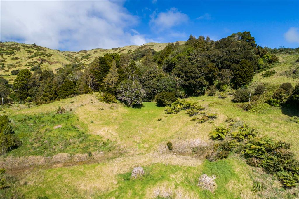Lot 2:Sheltered bush block with view to coast