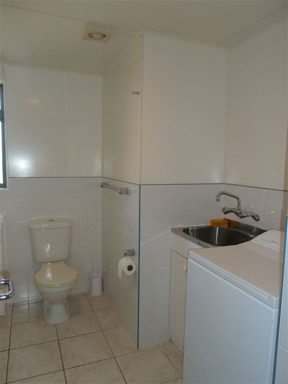Bathroom/Laundry in Downstairs Flat