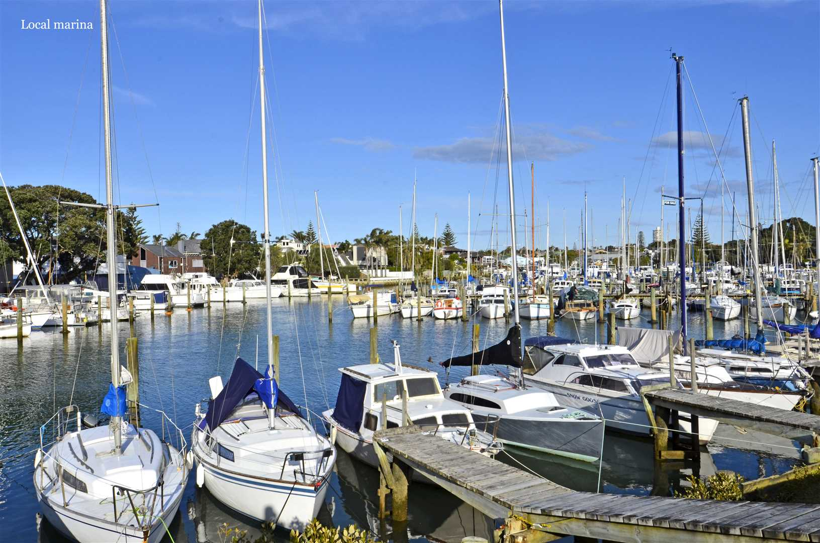 Close to Milford Marina and Reserve