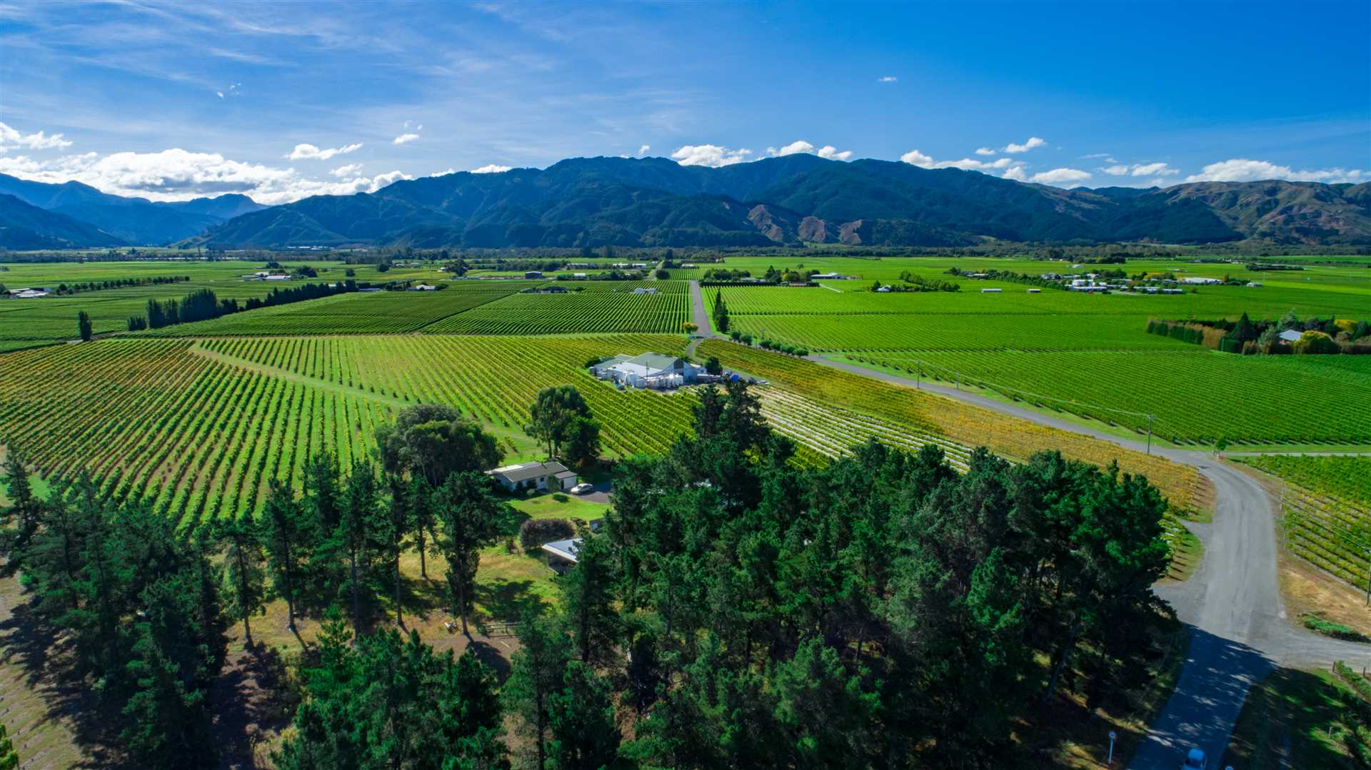 "Marlborough ""Golden Mile"" Winery Opportunity"