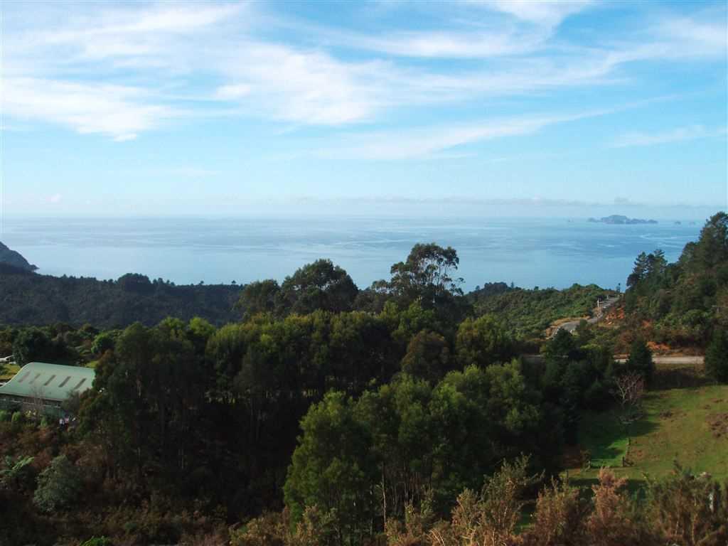Picture Perfect Ocean & Rural Views