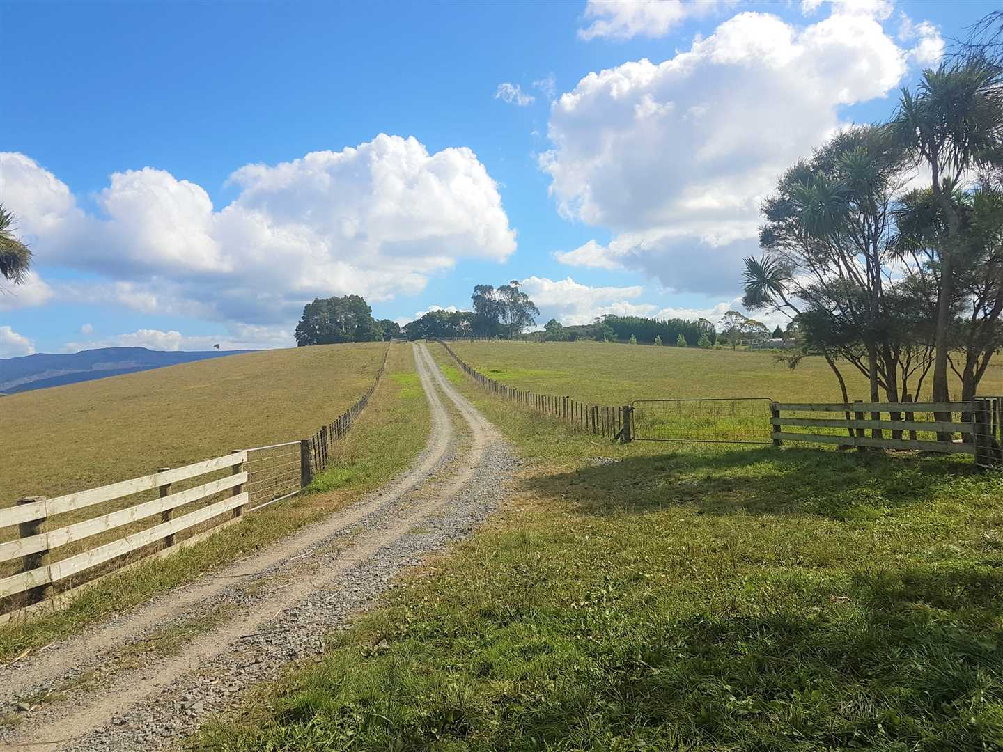 Tidy 79 Hectare Grazing Block With Renovated Home
