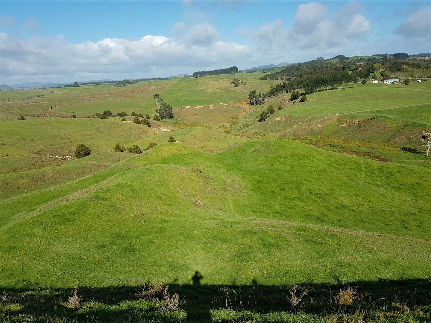Location Is Key Here - 55 hectares