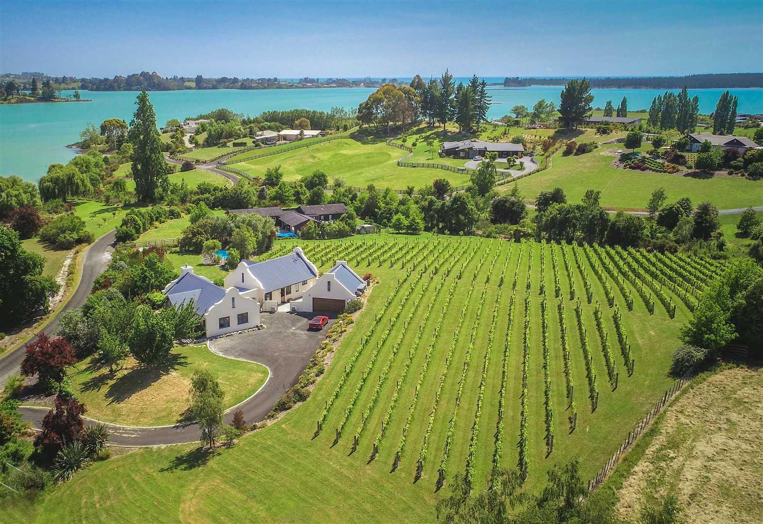 Green Point Vineyard
