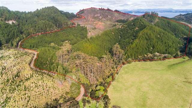 88 Matapaua Bay Road, Opito Bay